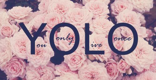 yolo_large